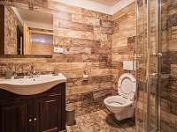 koupelna malý apartmán - pronájem chalupy Velké Karlovice