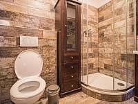 koupelna velký apartmán -