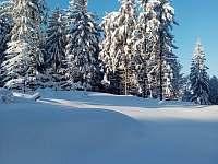 zima 2021 - Velké Karlovice