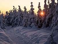 Cestička na Lysou horu - chalupa k pronájmu Lubno