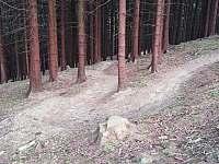 Tip na výlet: Bike trail Tanečnice (Zděchov) - Lužná