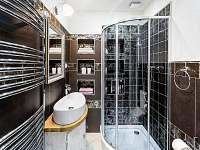 """Apartmán """"Malý princ"""" koupelna 1 - rekreační dům k pronajmutí Dolní Lomná"""