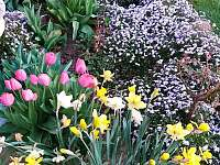 kvetoucí záhon - Hutisko Solanec