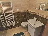 velký apartmán_WC se sprchou u vchodu - chalupa k pronajmutí Hutisko Solanec