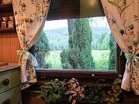 Pohled z kuchyně s bylinkovým truhlíkem na louku a Metylovickou hůrku - chata k pronajmutí Frýdlant nad Ostravicí