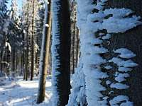 Krutá, ale nádherná zima v Beskydech