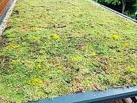 zelená střecha nad krytou terasou - chata k pronájmu Dolní Lomná