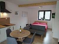 Apartmán s terasou - k pronajmutí Dolní Lomná
