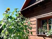 Pozdní léto - chata ubytování Ostravice