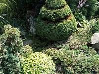Zahrada - pronájem apartmánu Tyra