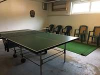 stolní tenis a šipky