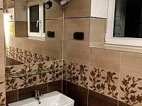 koupelna v přízemí - pronájem chalupy Kunčice pod Ondřejníkem