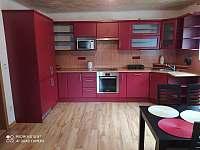 Kuchyně - apartmán k pronajmutí Tichá