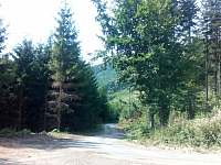 Pohled na příjezdovou cestu z parkoviště