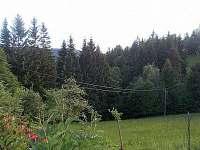 les - chalupa k pronajmutí Hutisko-Solanec