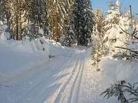 Běžkařské trasy
