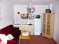 Kuchyňka se sporákem, lednicí, mikrovlnnou troubou a varnou konvicí