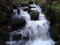 Jestřábi potok - pronájem chalupy Dolní Lomná