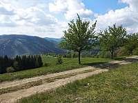 Pohled z Kamenitého - Dolní Lomná
