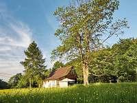 Chata k pronajmutí - dovolená Slezsko rekreace Třinec - Tyra