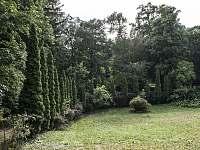 keře v zahradě