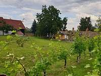 Zahrada - chalupa k pronájmu Liběšice - Horní Chobolice