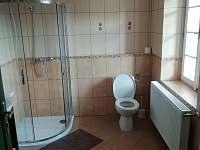 Koupelna - apartmán k pronajmutí Kravaře - Viska