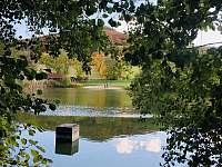 Milešovský rybník na letní koupání - pronájem chalupy Velemín - Milešov