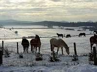 zima na ranči je jako stvořená k rozjímaní, meditaci a nebo kousek zajet na lyže