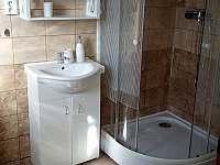 koupelna - apartmán k pronájmu Chotěšov pod Házmburkem