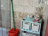 koupelna - pronájem apartmánu Chotěšov pod Házmburkem