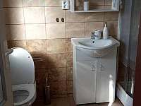 koupelna s WC - apartmán ubytování Chotěšov pod Házmburkem