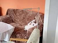 obýváček - apartmán k pronajmutí Chotěšov pod Házmburkem