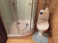 nová koupelna s masážním sprchovým boxem