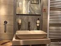 koupelna přízemí - pronájem srubu Horní Podluží