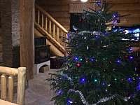 Vánoce - srub k pronajmutí Horní Podluží