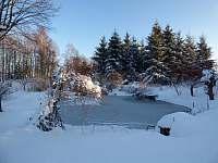 Rybníček v zimě - pronájem apartmánu Staré Křečany
