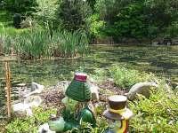 Součástí rozlehlé zahrady je rybníček