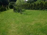 Chalupa k pronájmu - chalupa ubytování Krásná Lípa - Zahrady - 9