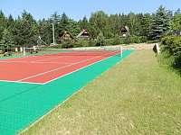 tenisový kurt - pronájem chaty Rynartice