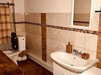 1. Koupelna - pronájem chalupy Horní Police