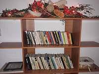 Knihovna - chalupa k pronájmu Krásná Lípa