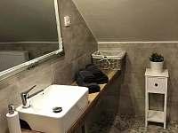 koupelna a wc - chalupa k pronájmu Dolní Chřibská