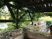 Kryté venkovní posezení (přítomnost kočky nezaručena) - chalupa ubytování Kunratice - Lipnice