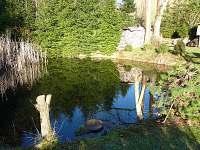 rybník v zahradě