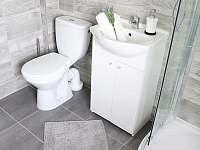 Čtyřlůžkový apartmán koupelna - pronájem Krásná Lípa
