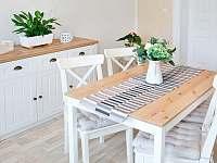 Čtyřlůžkový apartmán kuchyň - ubytování Krásná Lípa