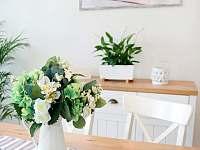Čtyřlůžkový apartmán kuchyň - k pronájmu Krásná Lípa