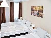 Čtyřlůžkový apartmán ložnice - k pronajmutí Krásná Lípa