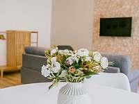 Čtyřlůžkový apartmán(dvě ložnice) - k pronajmutí Krásná Lípa
